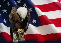 A graphic of the American Bald Eagle in front of an American Flag